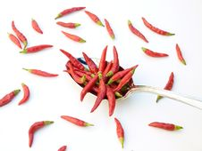 Free Chili In The Spoon Stock Photos - 6788123