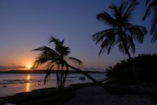 Free Tropical Sunset Stock Photos - 6788373
