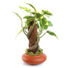Artificial Plant Royalty Free Stock Photography