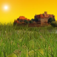 Free Green Grass, Acorns And Castle Royalty Free Stock Photography - 6789357