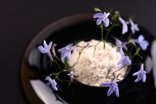 Free Small Blue Flower Royalty Free Stock Images - 6789709