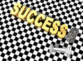 Free Success Concept Royalty Free Stock Photography - 6790377