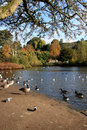 Free River Wye Bakewell Darbyshire Stock Photos - 6796173