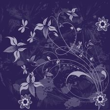 Free Floral Background. Royalty Free Stock Photo - 6790165