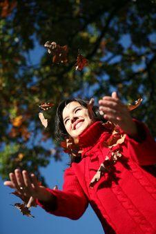 Beauty Autumn Series Stock Photos
