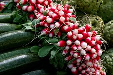 Radish Between The Artichoke And Zucchini Stock Photography