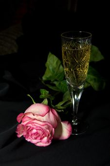 Glass With Champagne And Rose Royalty Free Stock Images