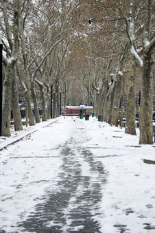 Free Snowy Park Royalty Free Stock Photography - 6791867