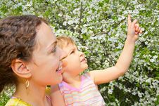 Free Mother And Daughter Look On Blossom Cherry Stock Photography - 6793582