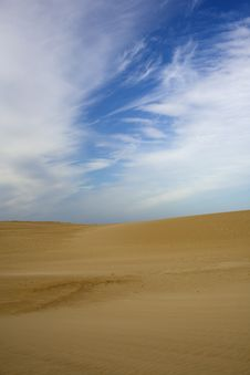 Free Vertical Sand Dune Royalty Free Stock Photo - 6793905