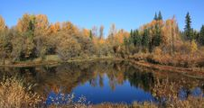 Free Autumn Colored Pond Royalty Free Stock Photography - 6794507