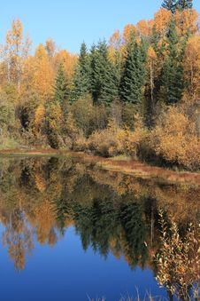 Free Autumn Colored Pond Stock Photo - 6794550