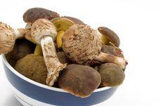 Free Raw Fresh Mushrooms Stock Image - 6797031