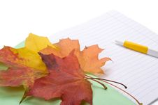 Writing-book, Pen And Autumn Leaves Royalty Free Stock Photography