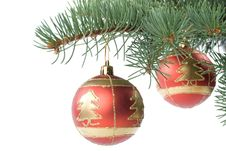 Free Fir Tree Branch With Decoration Royalty Free Stock Photography - 6798767