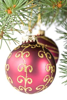 Free Fir Tree Branch With Decoration Stock Images - 6798774