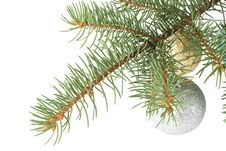 Free Fir Tree Branch With Decoration Royalty Free Stock Image - 6798836