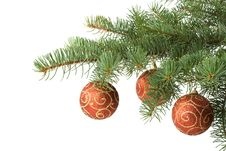 Free Fir Tree Branch With Decoration Stock Photography - 6798842