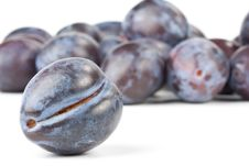 Free Fresh Plums Stock Images - 6798894