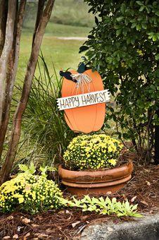 Free Happy Harvest Stock Images - 6798974