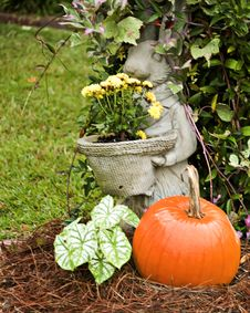 Free Rabbit Standing By A Pumpkin Stock Images - 6799174