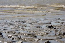 Free Sea Shore Stock Images - 680274