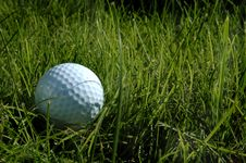 Free Golf - Ball In Long Grass Stock Photo - 681750