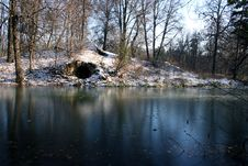 The First Ice On A Pond. Stock Image