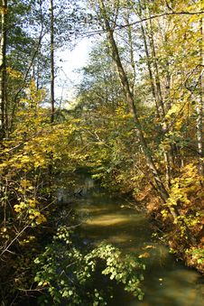 Free Autumn Park. Royalty Free Stock Photo - 688935