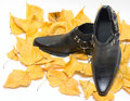 Free Man Shoes On Fall Leafs Stock Image - 6803741