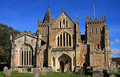Free Ottery St Mary Parish Church Stock Photography - 6807402