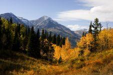 Free Autumn Splender Stock Photos - 6800413
