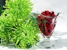 Red Berry In Glass And Flowers Stock Images