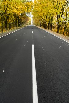 Free Road Royalty Free Stock Photos - 6800708