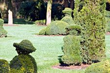 Free View Of Topiaries Royalty Free Stock Photography - 6801047