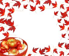 Free Autumn Leaves And Apples Stock Image - 6802481
