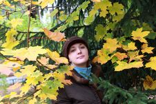 Girl Among Leaves Royalty Free Stock Photo