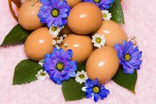 Free Easter Egg With Flowers Royalty Free Stock Photos - 6805168