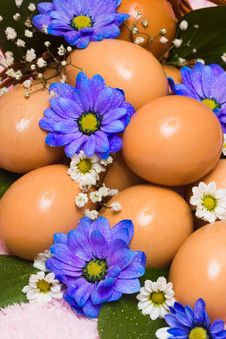 Free Easter Egg With Flowers Stock Photo - 6805180