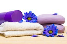 Free Spa Essentials Royalty Free Stock Image - 6805286