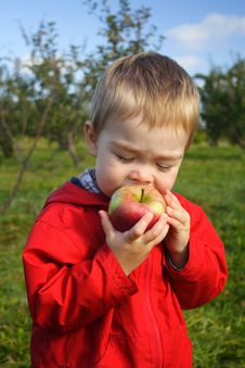 Eating An Apple Royalty Free Stock Photos