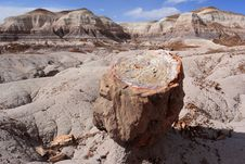 Free Landscape At Petrified Forest National Park Stock Photo - 6805470