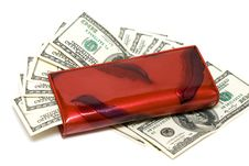 Free Wallet With Dollars Royalty Free Stock Image - 6805506