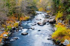 Free Creek In The Forest In Autumn Royalty Free Stock Images - 6806669