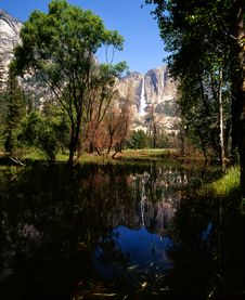 Free Yosemite Fall Reflection Royalty Free Stock Photography - 6806847