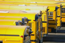 Free Parked School Buses Royalty Free Stock Photo - 6807845
