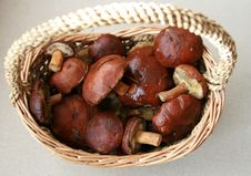 Free Mushrooms In A Basket Royalty Free Stock Photo - 6807875