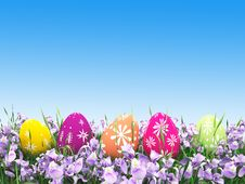 Free Easter Colorful Eggs On The Meadow Stock Photography - 68057792