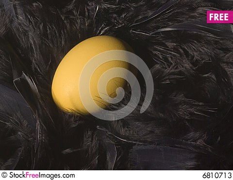 Free Golden Nest Egg Stock Photos - 6810713
