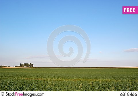 Free Agricultural Field Royalty Free Stock Image - 6818466